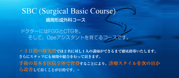 SBC(Surgical Basic Course)